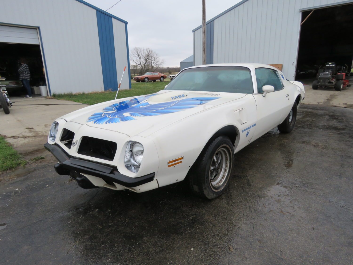 Amazing Trans Am & Pontiac Cars and Parts Hoard! The Kansas Collection - image 5