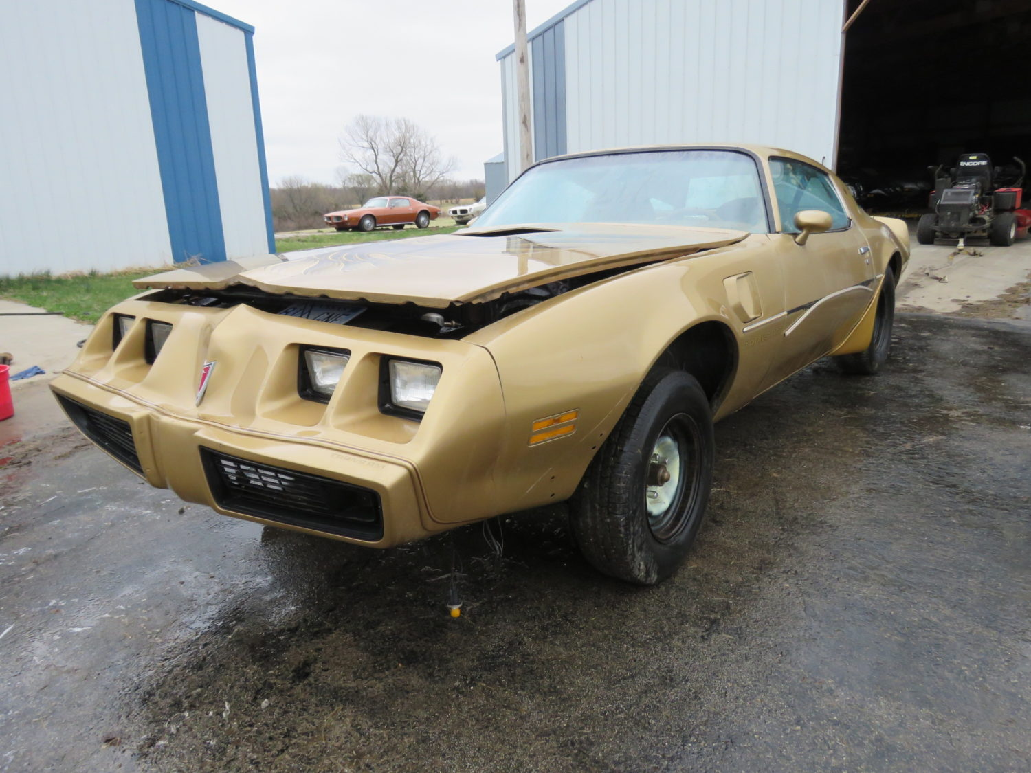 Amazing Trans Am & Pontiac Cars and Parts Hoard! The Kansas Collection - image 6