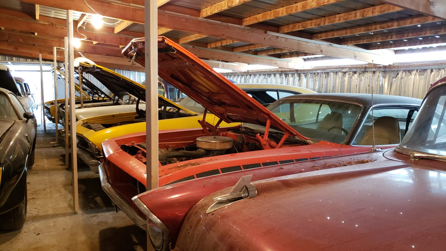 Muscle Car Heaven! The Coyote Johnson Collection Auction - image 12