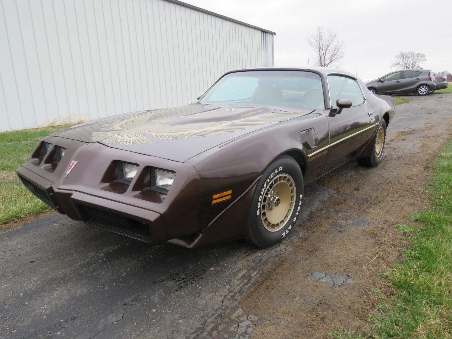 Amazing Trans Am & Pontiac Cars and Parts Hoard! The Kansas Collection - image 9