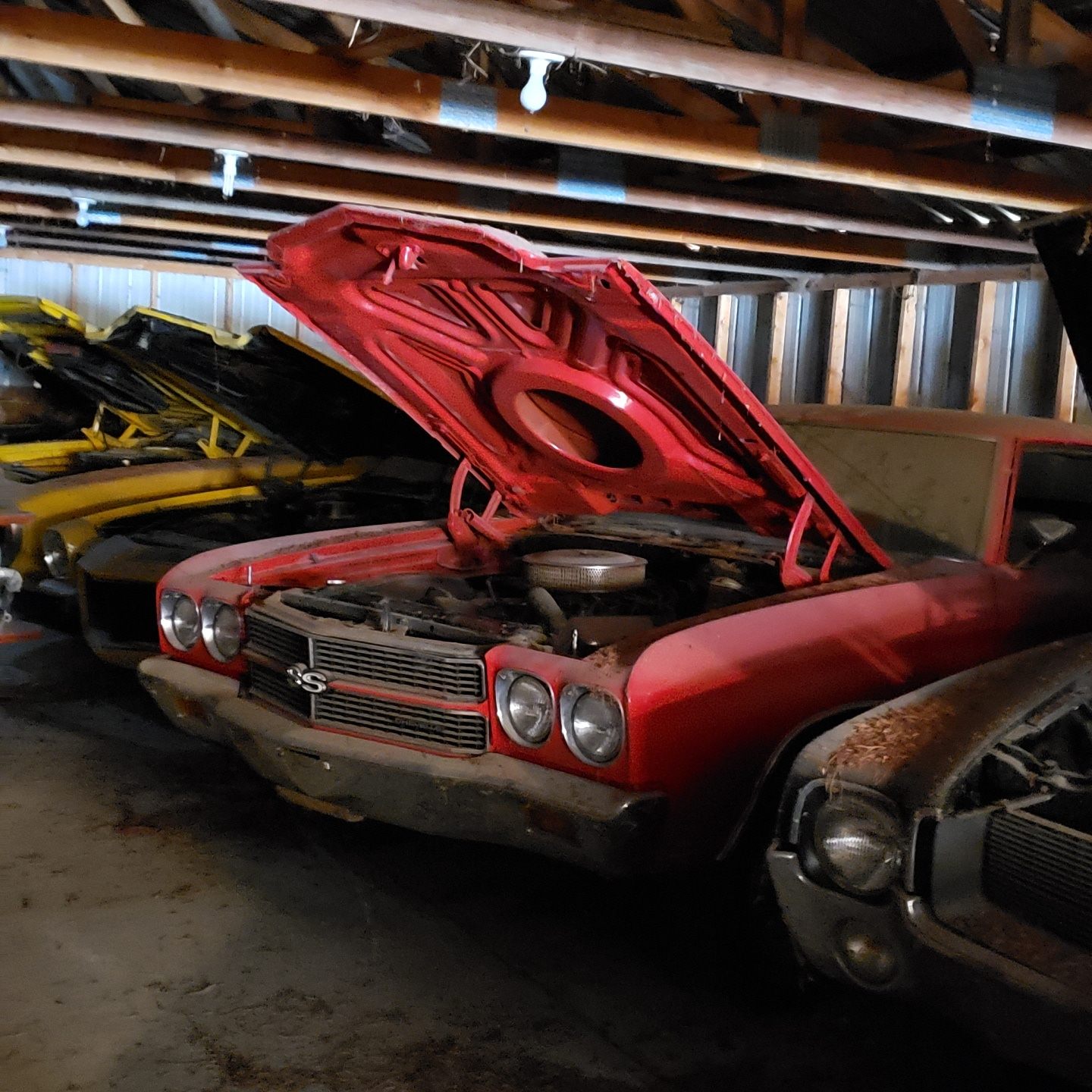 Online Public Car Auction >> Iowa Muscle Car Hoard! The Coyote Johnson Collection Auction Auction - September 14, 2019 ...