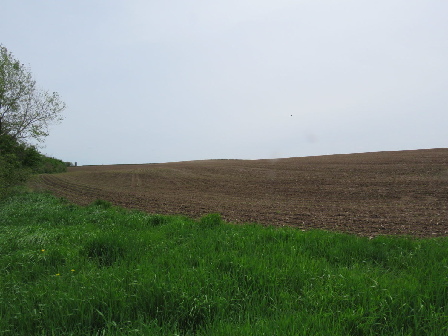 Amazing Real Estate Opportunity-Approx. 73 Acres at Auction- The Valley Springs Farm - image 11
