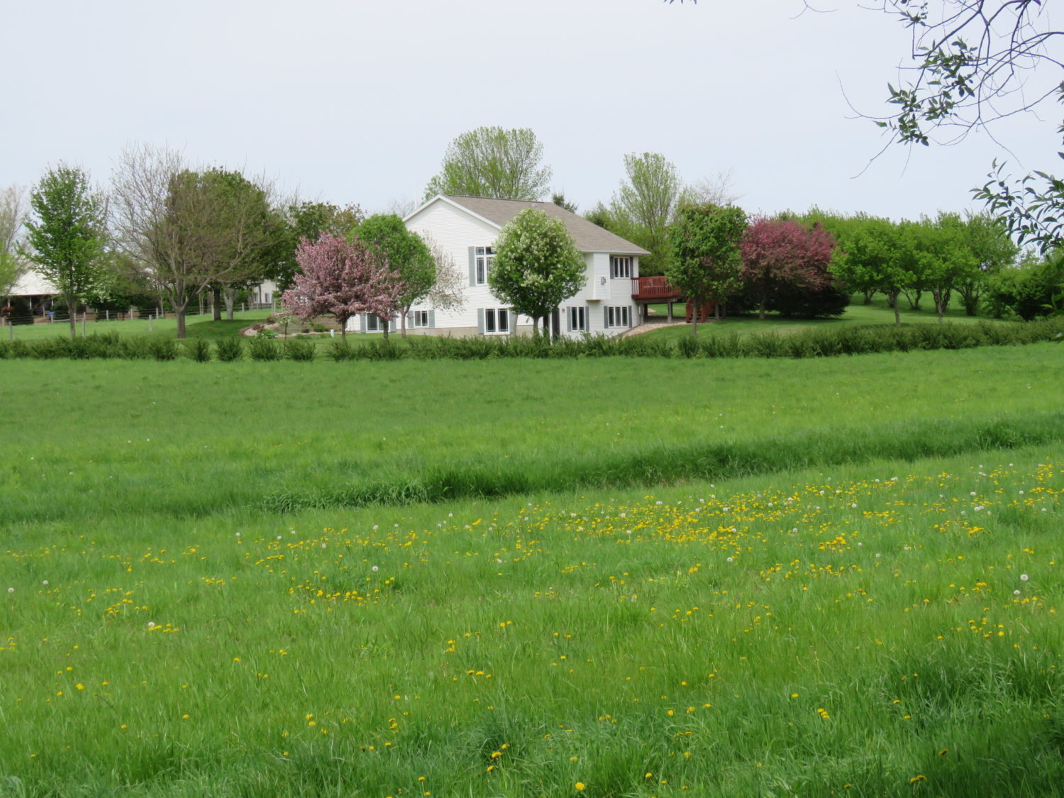 Amazing Real Estate Opportunity-Approx. 73 Acres at Auction- The Valley Springs Farm - image 9